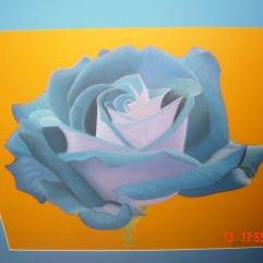 Rose | May 2004